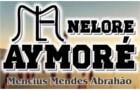 Nelore Aymoré