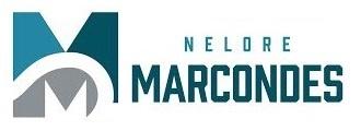 Nelore Marcondes